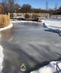 home ice skating